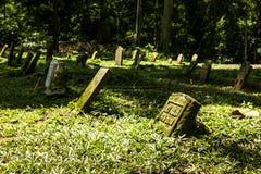 Cimetière dans la forêt de singe Photographie stock libre de droits
