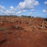 Cimetière de désert de Poipu Kauai Image libre de droits