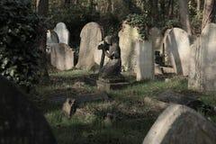 Cimetière de Highgate à Londres photos libres de droits