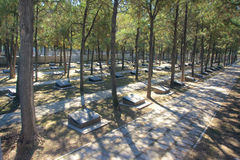 Cimetière de martyres Photos stock
