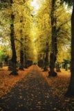 Cimetière de Newark, route de Londres Nottinghamshire R-U en automne Image stock
