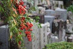 cimetière de tristesse Photographie stock