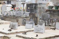 Cimetière du Cuba Image libre de droits