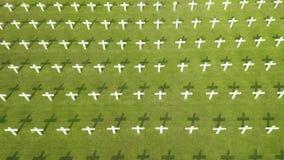 Cimetière néerlandais de guerre avec des croix à Jakarta clips vidéos