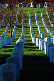 Cimetière national d'Arlington Image stock