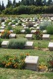 Cimetière solitaire de mémorial de pin Images libres de droits