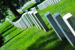 Cimetry vit vaggar död för grönt gräs dör lopp för turism för natur för soldatträdtystnad sceniskt Arkivbilder