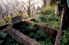 Cimitero antico Fotografie Stock Libere da Diritti