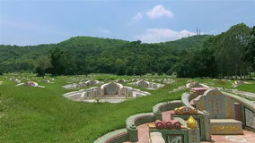 Cimitero cinese nel festival di Ching Ming stock footage