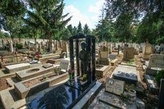 Cimitero del bambino di Belgrado fotografie stock