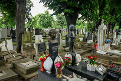 Cimitero del bambino di Belgrado immagine stock libera da diritti