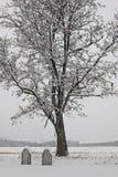 Cimitero del paese con neve Fotografia Stock Libera da Diritti