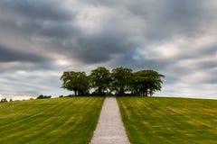 Cimitero del terreno boscoso Fotografia Stock