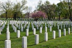 Cimitero di Arlington a Arlington la Virginia fotografia stock
