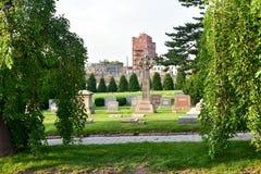 Cimitero di bosco verde e frondoso fotografia stock libera da diritti