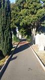 Cimitero di Glasnevin - Dublino - R I P, percorso a resto eterno Fotografie Stock Libere da Diritti