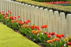 Cimitero di guerra Fotografia Stock Libera da Diritti