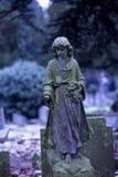 Cimitero di Londra Fotografie Stock Libere da Diritti
