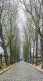 Cimitero di Père Lachaise Immagine Stock Libera da Diritti