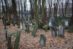Cimitero ebreo Immagini Stock