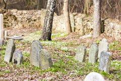 Cimitero ebreo, Batelov Fotografia Stock