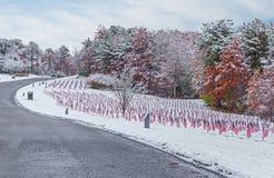 Cimitero innevato del veterano Fotografia Stock