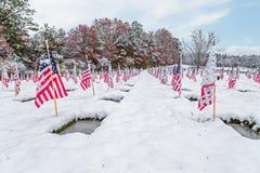 Cimitero innevato del veterano con le bandiere Immagine Stock Libera da Diritti