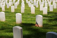 Cimitero militare Fotografie Stock
