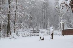 Cimitero militare, cimitero di guerra, inverno del cimitero di guerra, inverno militare del cimitero, neve di inverno dei soldati Immagini Stock