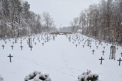 Cimitero militare, cimitero di guerra, inverno del cimitero di guerra, inverno militare del cimitero, neve di inverno dei soldati Immagine Stock Libera da Diritti