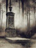 Cimitero nebbioso nel legno Immagine Stock