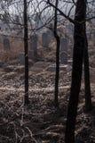 Cimitero spettrale Fotografia Stock