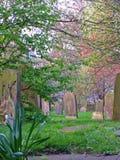 Cimitero storico Immagini Stock Libere da Diritti