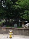 Cimitero triste Immagini Stock Libere da Diritti