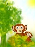 Cimpanzee Mutter mit ihrem Schätzchen Stockfotos