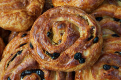 Cinammon raisin rolls Stock Image