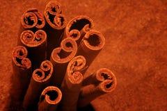 Cinamomo Imagen de archivo libre de regalías