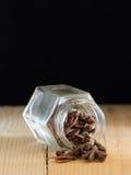 cinamomo foto de archivo libre de regalías