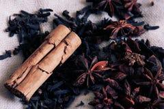 Cinamomo, clavel y anís foto de archivo libre de regalías