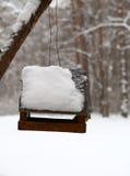 Cinciarella che si alimenta nell'inverno Fotografia Stock