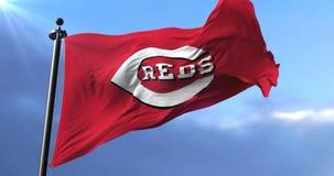 Cincinnati Reds flag, american professional baseball team, waving - loop. Flag of the team of the Cincinnati Reds, american professional baseball team, waving at stock video footage