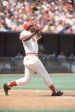 Joe Morgan, Cincinnati Reds. Cincinnati Reds legendary second baseman Joe Morgan. Image taken by color slide royalty free stock images