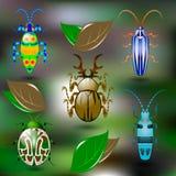 Cinco besouros coloridos brilhantes Imagens de Stock