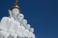 Cinco buddha imagens de stock royalty free