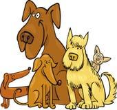 Cinco cães engraçados Fotos de Stock