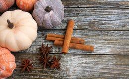 Cinco cores diferentes envelhecidas rústicas das abóboras em um fundo de madeira rústico Imagens de Stock