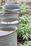 Cinco cubetas com água Imagens de Stock