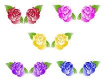Cinco dúos de rosas Imagenes de archivo