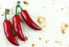 在Cinco de马约角文本的软的玉米粉薄烙饼壳背景构筑的三红色chilis 图库摄影