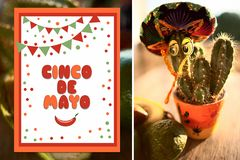 Cinco De Mayo  poster  illustration. Photo of a cactus in a sombrero and illustration with text. Funny picture stock photo